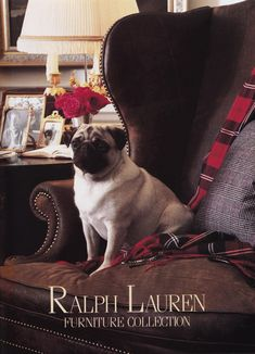Rl Home Collection 1987 I adore pug images!