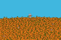 Bunny in a Sea of Carrots by bikeparts. I love this. Enlarge it :)