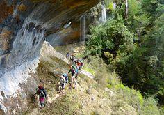 #Backpacking Kahurangi National Park #NewZealand