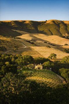 WFEstate vacation rental in Carmel Valley from VRBO.com! #vacation #rental #travel #vrbo