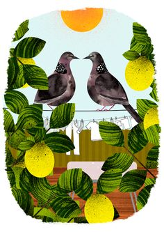 Marc Martin's portfolio, presented by The Jacky Winter Group. Marc Martin, Jacky Winter, The Art Of Storytelling, The Design Files, Bird Illustration, Bird Design, Stop Motion, Bird Art, Art Journals