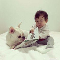 これなんだ?♥️ #frenchbulldog #frenchie #dog #daughter #babygirl #フレンチブルドッグ #女の子