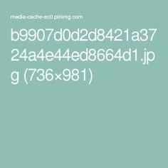 b9907d0d2d8421a3724a4e44ed8664d1.jpg (736×981)