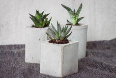 Monthly Makers natur - betongkrukos hos Stina