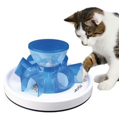Pet Supplies Cat Supplies Cat Neater Feeder Deluxe Cranberry