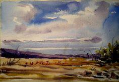 Desierto Florido cerca de Copiapó. Pintado por el pintor copiapino Juan Carlos Aguirre Carrasco.