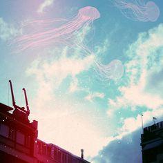 les méduses / cloud