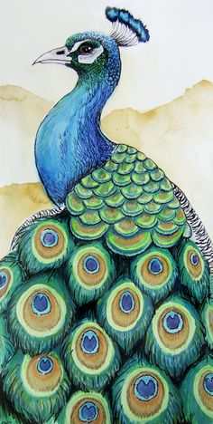 Peacock by on DeviantArt Peacock Sketch, Watercolor Peacock, Peacock Painting, Peacock Wall Art, Watercolor Art, Peacock Drawing Simple, Cool Art Drawings, Pencil Art Drawings, Bird Drawings
