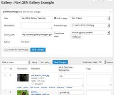 Top WordPress portfolio plugins for creatives via GoDaddy's Garage