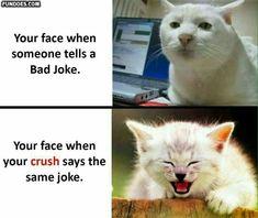 Speed dating legrační meme