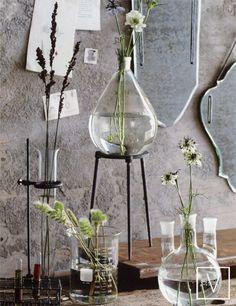 """Quand chimie et nature vont bien ensemble. """"When chemistry and nature go well together."""" reblogged byL'Art de la Curiosité - Essential oils treatment : Ustensiles chimie/cuisine Bouteille Vase Flotter"""