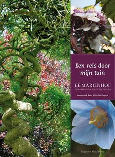 Dit boek is het verslag van de een jaar durende ontdekkingsreis door de 6000m2 grote tuin van Mariënhof. Het gaat o.a. over de bomen, heesters en vaste planten, die we op deze reis tegenkomen en hoe ze vanuit China, Japan en Amerika in Midwoud terecht gekomen zijn. #tuinen # tuinieren #tuinboek #boekentip