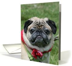 Pug card: Happy Birthday Pug Dog Greeting Card by Ritmo Boxer Designs
