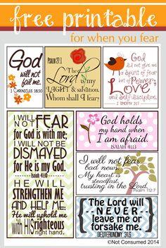 Bible verses to conquer fear. Scripture Cards, Scripture Study, Bible Art, Bible Scriptures, Bible Quotes, Free Printable Scripture, Scripture For Peace, Prayer Journal Printable, Encouragement Scripture