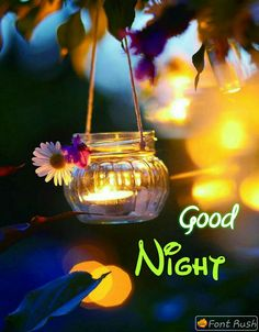 good night wishes with beautiful flowers Good Night Lover, Good Night Messages, Good Night Wishes, Good Night Sweet Dreams, Good Night Quotes, Good Morning Good Night, Good Morning Images, Morning Light, Good Evening Greetings