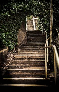 Find beautiful stairs to climb for your workout
