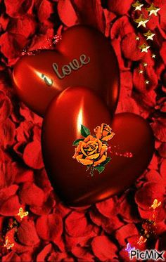 I Love You Pictures, Love You Gif, Beautiful Love Pictures, Love You Images, I Love You Baby, Heart Images, Heart Wallpaper, Love Wallpaper, Beautiful Rose Flowers