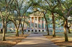 college of charleston campus - Google Search