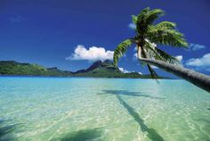Tropical islands you can rent on Air B&B