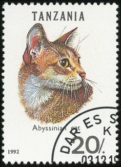 United Republic of Tanzania 1992 Cat Stamps - Abyssinian