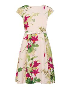 TORELLA - Forty's bloom printed dress - Light Pink   Womens   Ted Baker UK