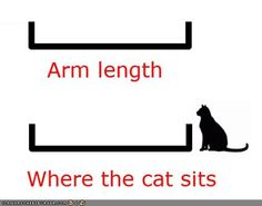 arm length: where the cat sits