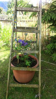Ladder Decor, Plants, Ideas, Home Decor, Lawn And Garden, Decoration Home, Room Decor, Plant, Home Interior Design