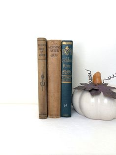 Vintage Brown Book Collection Fall Autumn by TheLittleThingsVin