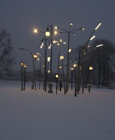 Munich, Germany-based artist Sonja Vordermaier created an installation entitled Streetlampforest, a collection of thirty European street lamps from different origins and times (Amsterdam, Berlin, Erfurt, Leipzig, Glasgow, Innsbruck, Milano, Hamburg, Prag, Cagnes-sur-mer (France), Sarajevo, Stuttgart, Belgrade, Lippstadt, Munich, Sofia, Trieste, Wolfsburg and Vienna).