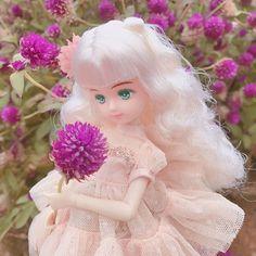 * 꽃의 요정같은 파레트짱❤ . #リカちゃん #リカちゃんキャッスル #liccachan #licca #리카 #리카캐슬 #パレットf