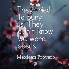 They tried to bury us, They didn't know we were seeds. _Mexican Proverb