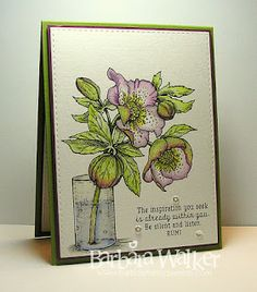 The Buzz: Hellebores from Power Poppy