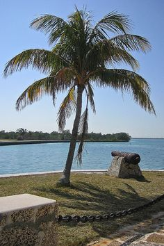 Biscayne National Park, Miami, FL, USA Florida Sunshine, Florida City, Sunshine State, Biscayne National Park, American National Parks, Mangrove Forest, Fl Usa, Gulf Of Mexico, State Parks