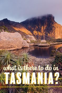 Want to visit Tasmania in Australia? Here is why this island is so special and all the things you can do. This 10 day guide is just the beginning -- all from a local perspective.