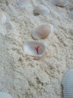 Seashell Letter Match Sensory Bin with Coconut Cloud Dough Sand from And Next Comes L