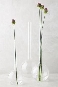 Laboratory Vase