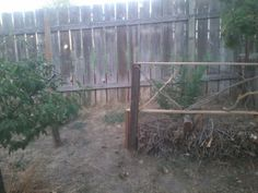 Made a fence out of recycled sticks also used as a wood pile for this winter