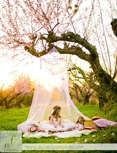 I really like the idea of having a netting hanging from a tree like this -- would be gorgeous for little girl portrait or bridal.
