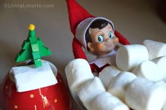 10 Fun Elf on the Shelf Ideas for 2012