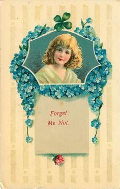 .old postcard