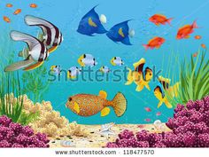 Underwater landscape with various water plants and swimming tropical fish. All objects are grouped. by fresher via Shutterstock Brain Drawing, Drawing Lessons For Kids, Different Fish, Types Of Fish, Plant Illustration, Water Plants, Tropical Fish, Art Techniques, Art Projects