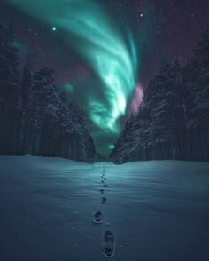 Kuzey ışıkları wallpaper ultra hd aurora borealis v 4k Wallpaper For Mobile, Iphone Wallpaper Sky, Lit Wallpaper, Nature Wallpaper, Phone Backgrounds, Iceland Wallpaper, Northern Lights Wallpaper, Trendy Wallpaper, Aurora Borealis