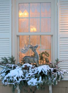 Reindeer parked in the window box looks for Santa