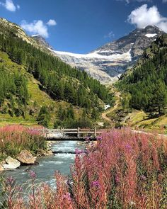 Fafleralp, Bern. River, Bern, Mountains, Nature, Painting, Outdoor, Collection, Pictures, Switzerland