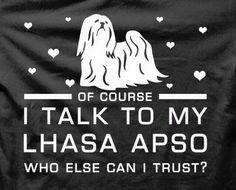 Talk to Lhasa Más