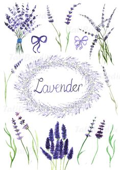 Handdrawn watercolor lavender clip art:  - contains 15 elements, each in separate .png file - one wreath (made from elements) - each image is 300 dpi