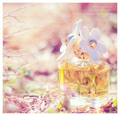 Daisy Perfume | Marc Jacobs - Personally I think this particular scent is highly overrated! But I couldnt resist the lovely photo.