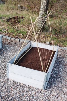 Garden Spaces, Garden Plants, Diy Outdoor Wood Projects, Espalier, Plant Supports, Garden Inspiration, Vegetable Garden, Gardening Tips, Landscape