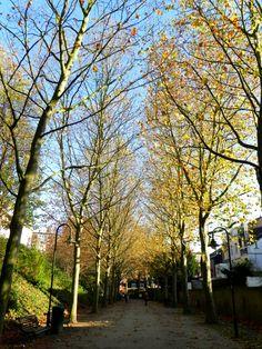 Remembering and Living in Leuven #travel #happy #Belgium