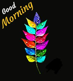 Good Morning Flowers Quotes, Sweet Good Morning Images, Good Morning Friends Images, Beautiful Morning Quotes, Good Morning Beautiful Pictures, Good Morning Kisses, Good Morning Image Quotes, Good Morning Cards, Good Night Friends